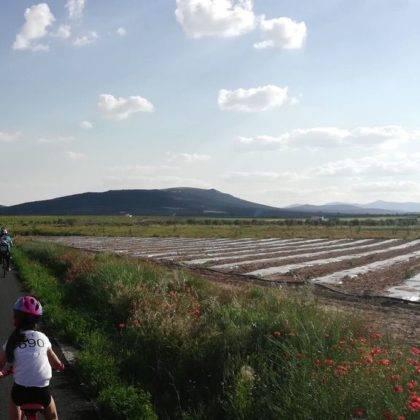 Galería de fotos y vídeo de la XI Marcha en bicicleta 65