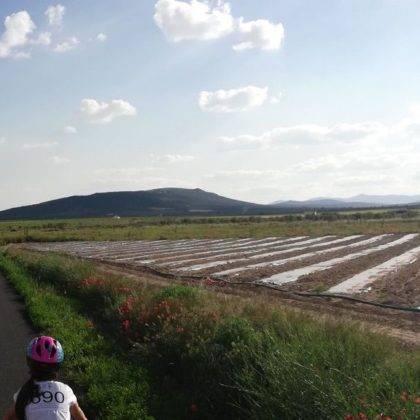 IX Marcha en bicicleta contra el cancer62 420x420 - Galería de fotos y vídeo de la XI Marcha en bicicleta