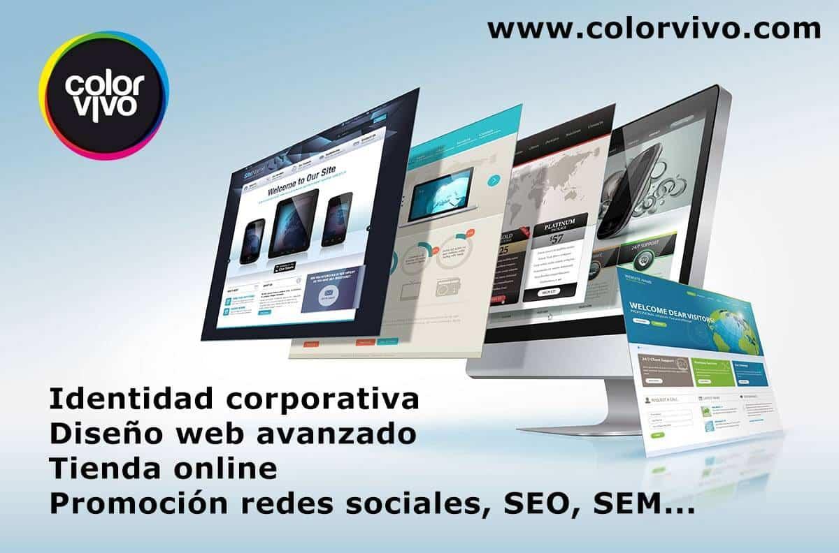 promocion color vivo ayudas herencia - Tu identidad corporativa o tienda online subvencionada para impulsar tu negocio