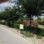 El Ayuntamiento intensifica la limpieza de calles y zonas verdes 9