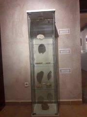 Patrimonio natural entorno y paraje de Herencia de la mano de Jesus Gomez 0008 179x241 - Inauguración de la exposición Patrimonio natural, entorno y paraje de Herencia