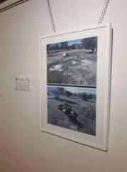 Patrimonio natural entorno y paraje de Herencia de la mano de Jesus Gomez 0013 179x241 - Inauguración de la exposición Patrimonio natural, entorno y paraje de Herencia