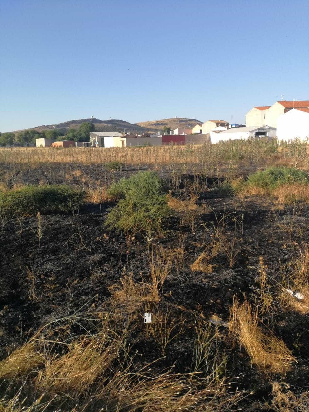 incendio extinguido en herencia cerca calle molinos 2 - Extinguido un incendio de la broza de una parcela en Herencia