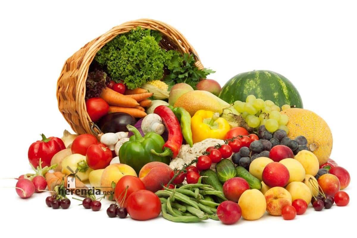 alimentos frescos y saludables - Recomendaciones de Sanidad para conservación y manipulación de alimentos en verano