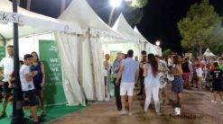 herencia en IV Feria Regional del Melon 2 247x138 - Herencia estuvo en el IV Feria Regional del Melón