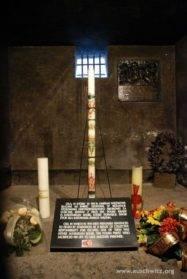 peregrinaci%C3%B3n parroquia de Herencia a Polonia4 187x279 - La parroquia de Herencia peregrina a Polonia