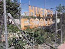 desayuno saludable ceip carrasco alcalde de herencia4 226x169 - Desayuno saludable en el CEIP Carrasco Alcalde