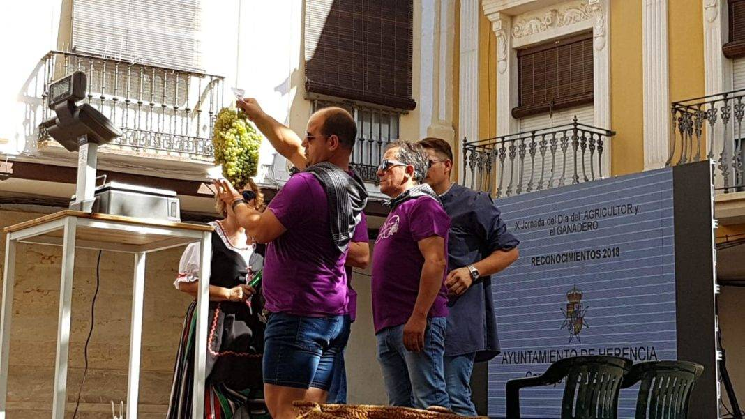DO La Mancha presente en la VI Fiesta de la Vendimia de Herencia 13