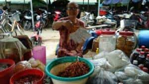 IMG 20181001 WA0024 300x169 - Perlé, rumbo a China,  atravesando Vietnam de Sur a Norte