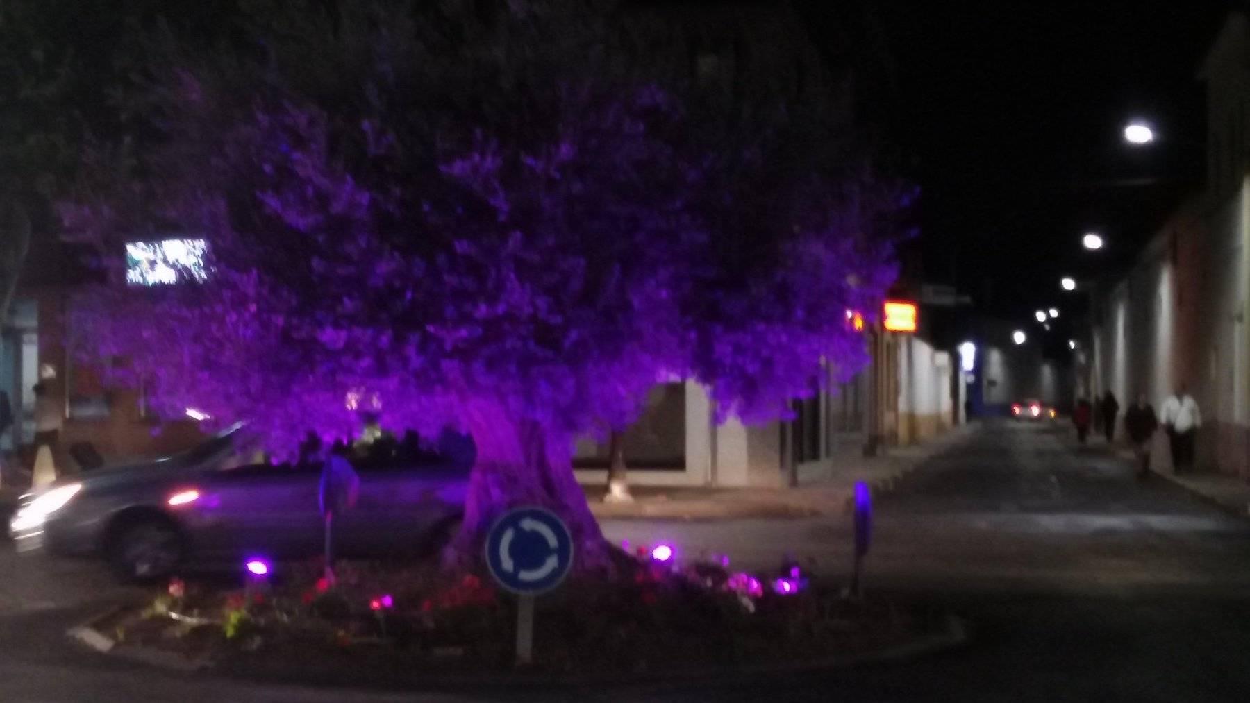 Iluminación artística de los olivos de la travesía por el Día Mundial del Cáncer de Mama 6