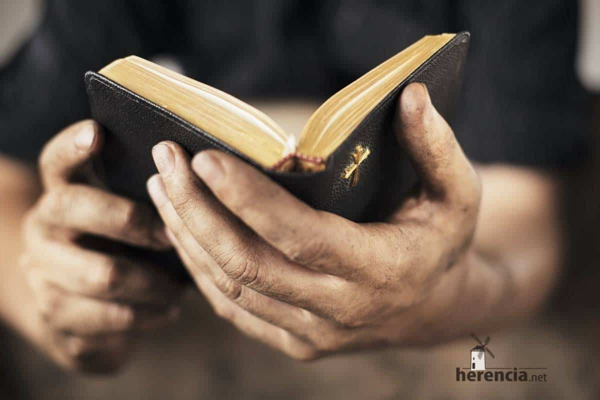 lectura biblia religion cristianismo - Siguen aumentando los alumnos que cursan clase de religión en Herencia