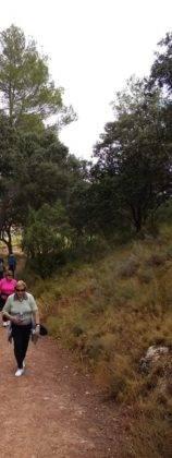 ruta senderista por las lagunas de Ruidera 3 158x420 - Clausurada la Semana del Mayor en Herencia