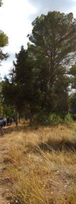 ruta senderista por las lagunas de Ruidera 4 158x420 - Clausurada la Semana del Mayor en Herencia