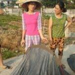 Perlé llegado a Hanoi, capital vietnamita. Etapas 436 a 445 120