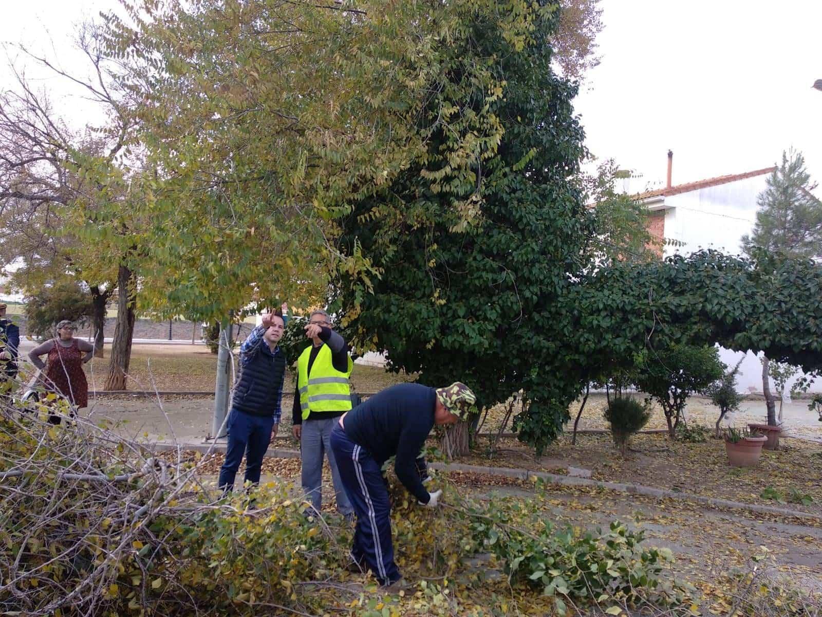 Comienza la campaña de Poda para garantizar la conservación de los árboles 11