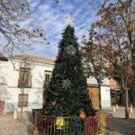 Un gran árbol de navidad en la Plaza Cervantes de Herencia 1