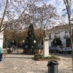 Un gran árbol de navidad en la Plaza Cervantes de Herencia 2