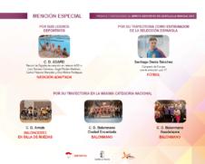 mencion especial merito deportivo 2017 1 226x181 - Los Premios y Distinciones al Mérito Deportivo CLM 2017 se entregarán en Herencia