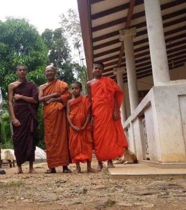 viaje de perle por el mundo elias por Sri Lanka 36 373x420 - Perlé, por avatares del destino, recorriendo la isla de Ceilán.