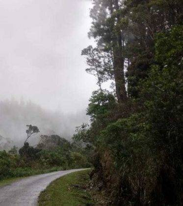 viaje de perle por el mundo elias por Sri Lanka 37 373x420 - Perlé, por avatares del destino, recorriendo la isla de Ceilán.