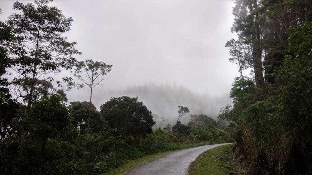 viaje de perle por el mundo elias por Sri Lanka 37 - Perlé, por avatares del destino, recorriendo la isla de Ceilán.