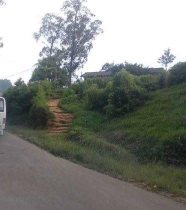 viaje de perle por el mundo elias por Sri Lanka 38 373x420 - Perlé, por avatares del destino, recorriendo la isla de Ceilán.