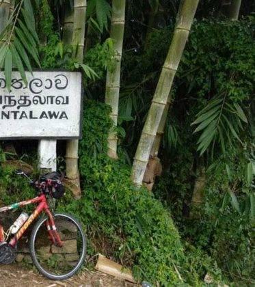 viaje de perle por el mundo elias por Sri Lanka 39 373x420 - Perlé, por avatares del destino, recorriendo la isla de Ceilán.