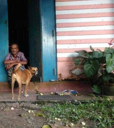 viaje de perle por el mundo elias por Sri Lanka 69 373x420 - Perlé, por avatares del destino, recorriendo la isla de Ceilán.