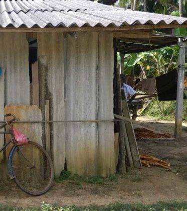 viaje de perle por el mundo elias por Sri Lanka 70 373x420 - Perlé, por avatares del destino, recorriendo la isla de Ceilán.