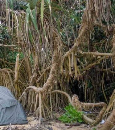 viaje de perle por el mundo elias por Sri Lanka 71 373x420 - Perlé, por avatares del destino, recorriendo la isla de Ceilán.