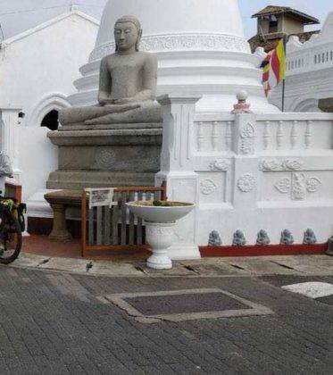 viaje de perle por el mundo elias por Sri Lanka 83 373x420 - Perlé, por avatares del destino, recorriendo la isla de Ceilán.