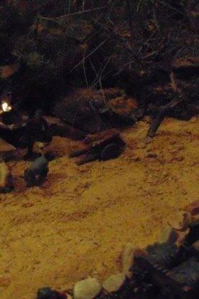 IV muestra de belenes navidad herencia 116 280x420 - Fotografías de la IV Muestra de Belenes de Herencia