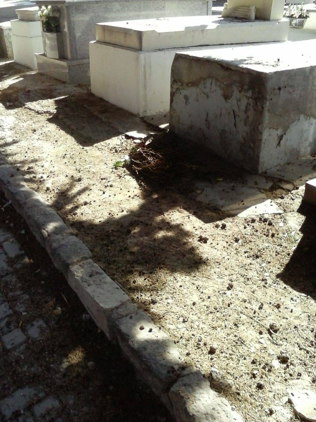 Ciudadanos Herencia pide mejoras para paliar el deterioro del cementerio municipal 1
