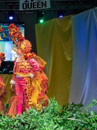 Fotografías de la inauguración del Carnaval de Herencia 2019 46