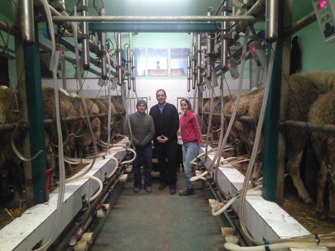 José Manuel Bolaños visita una majada de ovejas regentada por herencianos 4