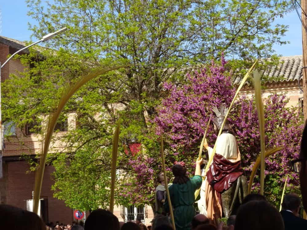 Procesion de la Borriquilla del Domingo de Ramos en Herencia Foto Mari Carmen Fdez Caballero06 1000x750 - Buen tiempo y devoción, en la celebración del Domingo de Ramos