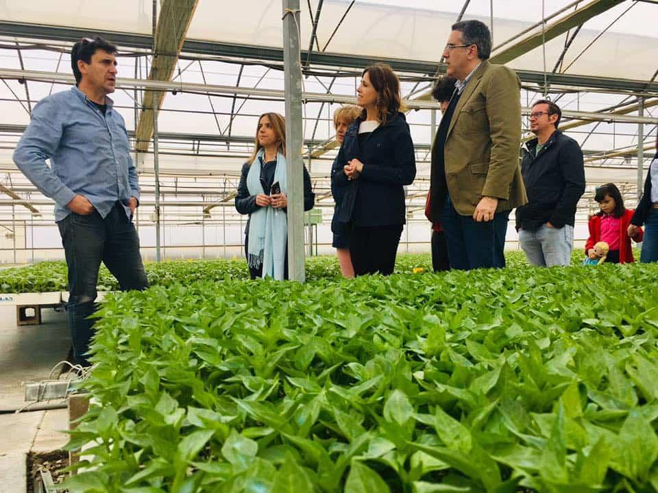 Rosa Romero visita una empresa de Herencia 6