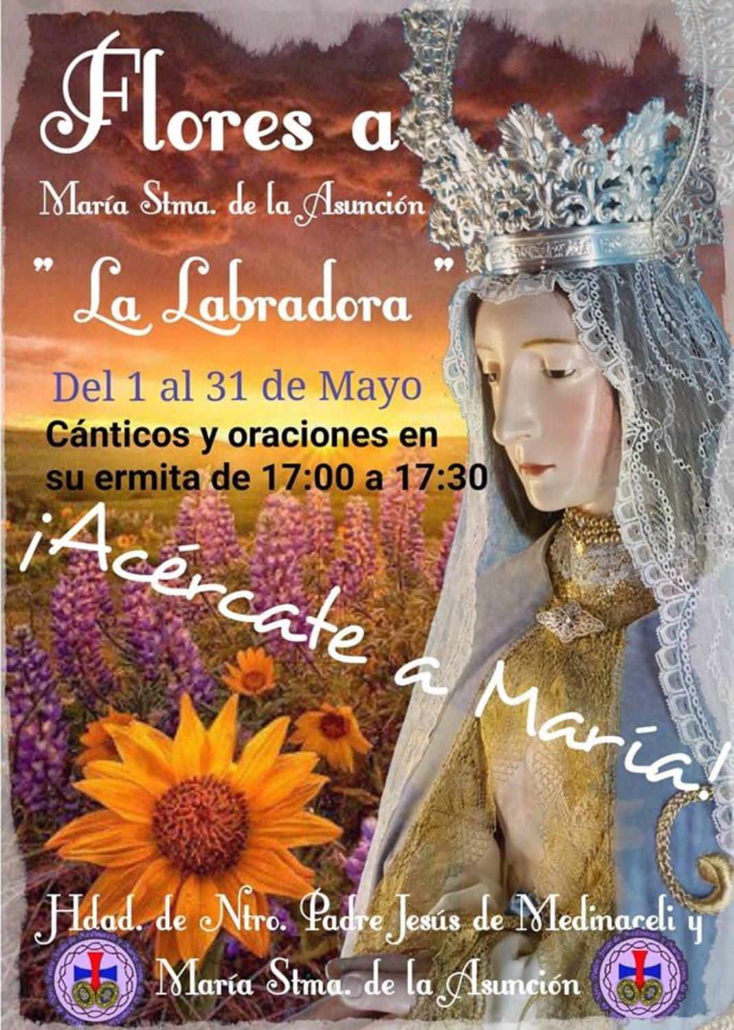 Flores a la LAbradora durante el mes de mayo 1068x1499 - La hermandad de Jesús de Medinaceli y la Virgen de la Asunción recupera la tradición del cántico de las flores durante el mes de mayo
