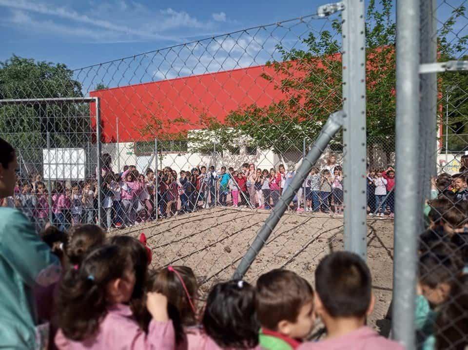 Huerto Escolar CEIP Carrasco Alcalde - EL CEIP Carrasco Alcalde vuelve a poner en marcha su huerto escolar