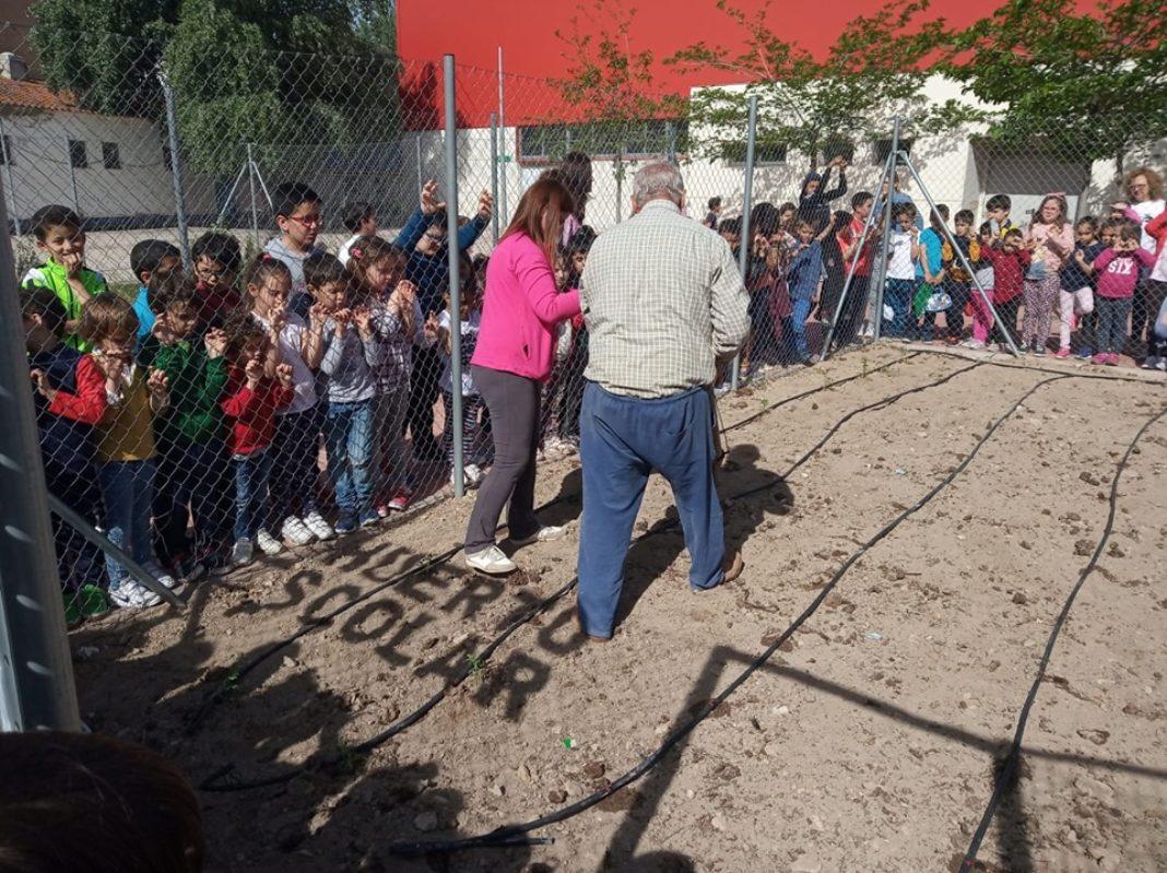 EL CEIP Carrasco Alcalde vuelve a poner en marcha su huerto escolar 13