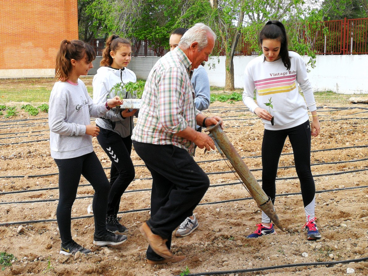El huerto del I.E.S. Hermógenes Rodríguez recupera su actividad 5
