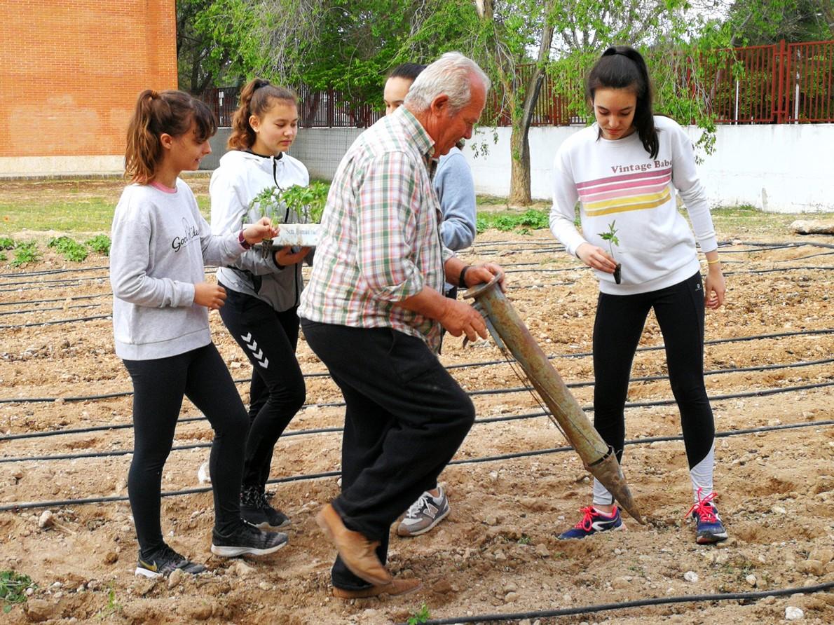 huerto del Hermógenes - El huerto del I.E.S. Hermógenes Rodríguez recupera su actividad