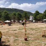 Herencia acoge la final de la Tercera Liga Social de Equitación 16