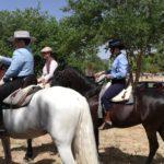 Herencia acoge la final de la Tercera Liga Social de Equitación 49