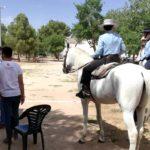 Herencia acoge la final de la Tercera Liga Social de Equitación 48