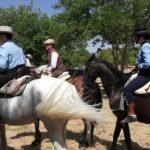 Herencia acoge la final de la Tercera Liga Social de Equitación 47