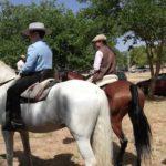 Herencia acoge la final de la Tercera Liga Social de Equitación 42