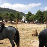 Herencia acoge la final de la Tercera Liga Social de Equitación 41