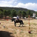 Herencia acoge la final de la Tercera Liga Social de Equitación 39