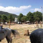 Herencia acoge la final de la Tercera Liga Social de Equitación 38